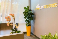 Modern Office Interior Plants