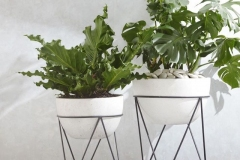 Phillo-in-mid-centery-planter-chevron-stand-o-from-Holly-v