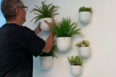 Wall-planters-wall-plants-install-wall-plants-office-wall-plants-e1565361831200