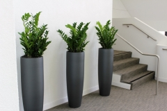 ZZ-3-in-tall-planters-Copy