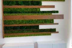Moss-Art-with-wood-Deviant-office-moss-walls-green-walls-vertical-garden-office-plant-service-e1565361766505