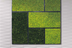 Moss-wall-panel-square
