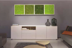 Moss-wall-panels-small
