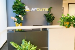 office planters, contemporary plants,