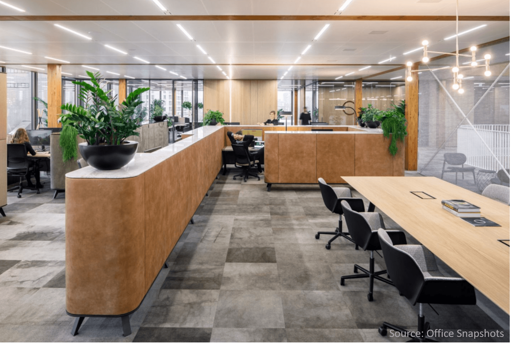 Contemoray-office-plants-make-for-a-better-workspace