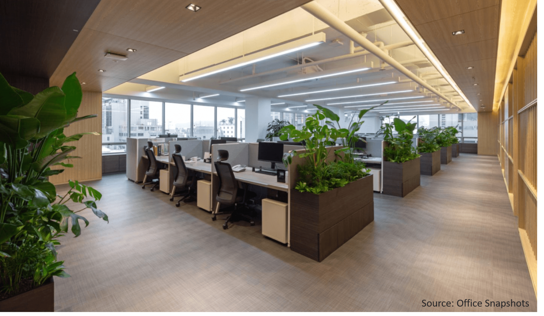 Long-hall-of-office-wall-planters-with-plants