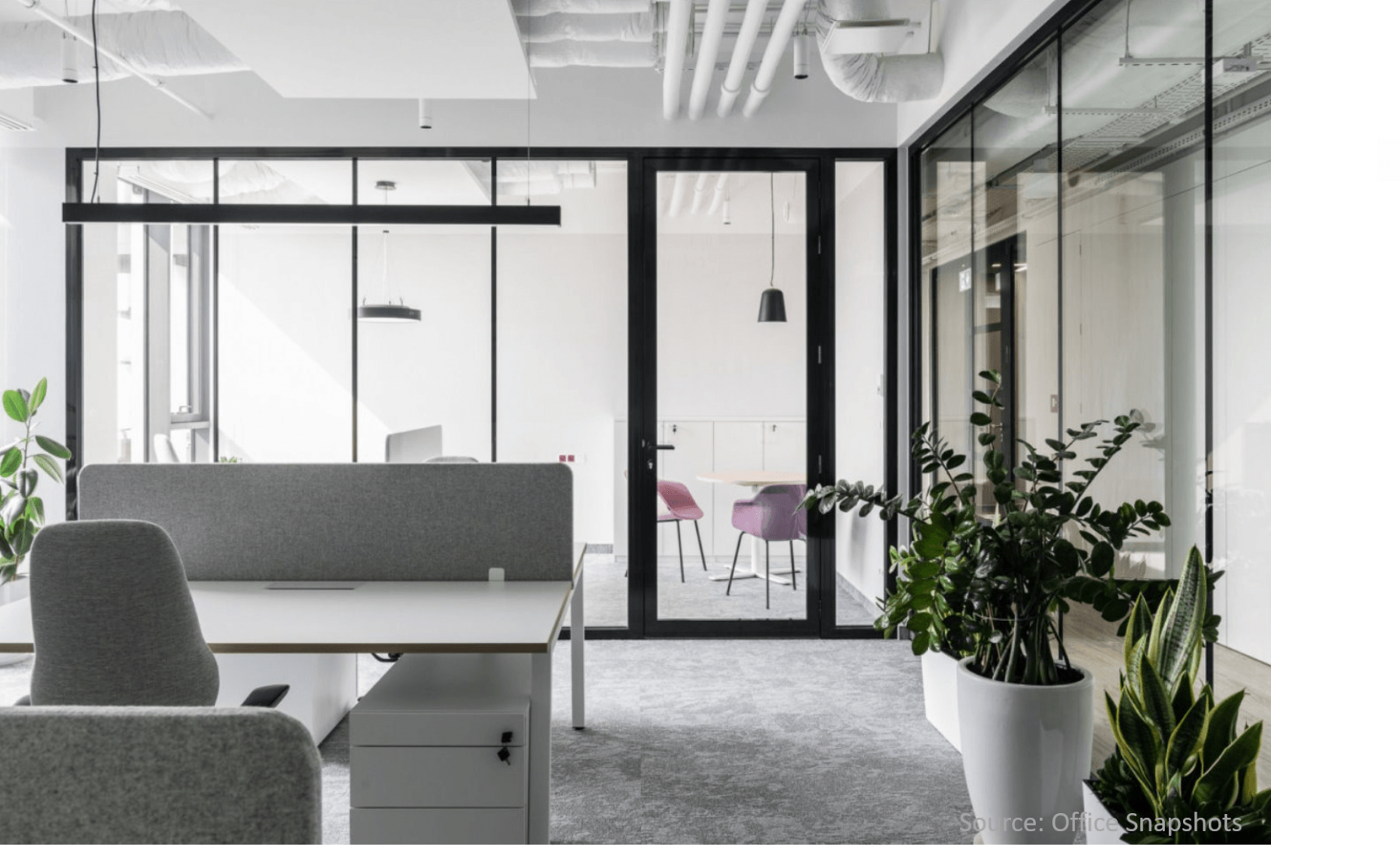Modern-white-pots-with-plants-in-office