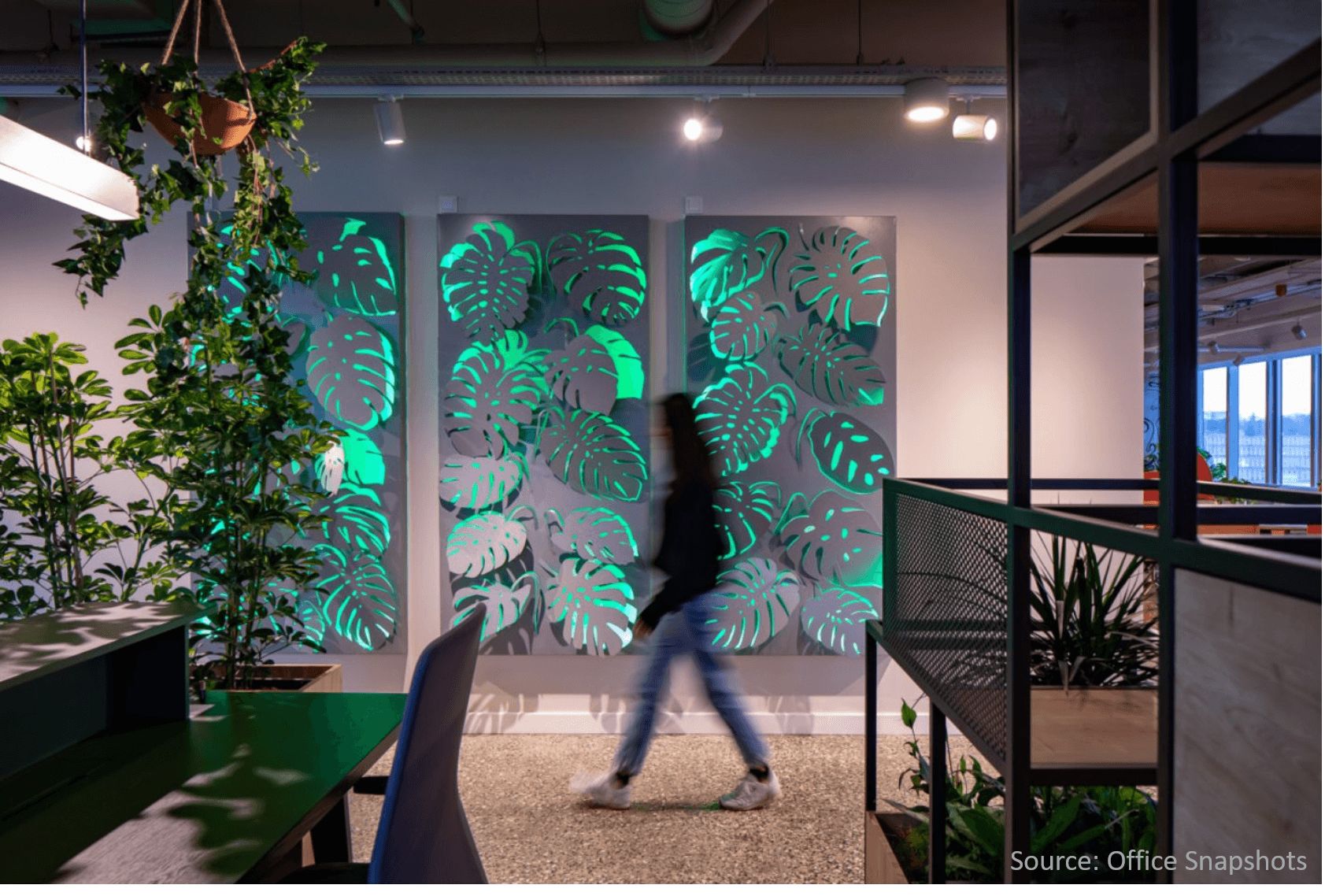 Neo-plant-design-with-real-live-plants-in-office