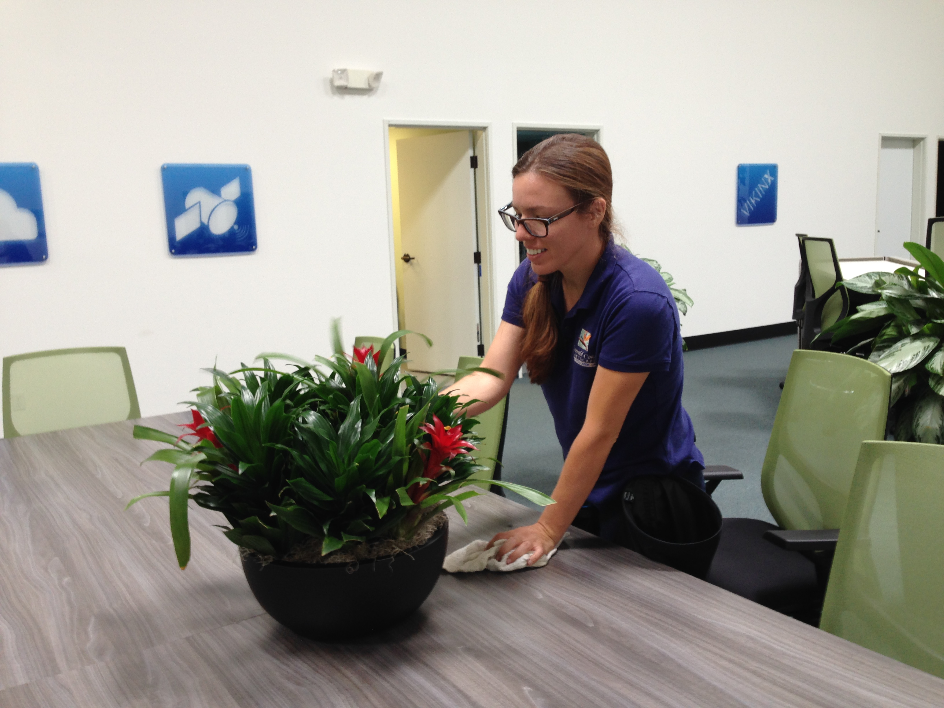 Best Plants And Service For The Professional Office