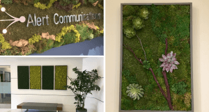 Moss art, sound wall, biophilic design, corporate art, commercial art