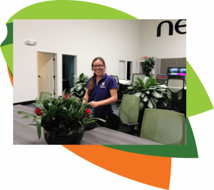 Office Plant Care, Plant Service, Interior Plant Design