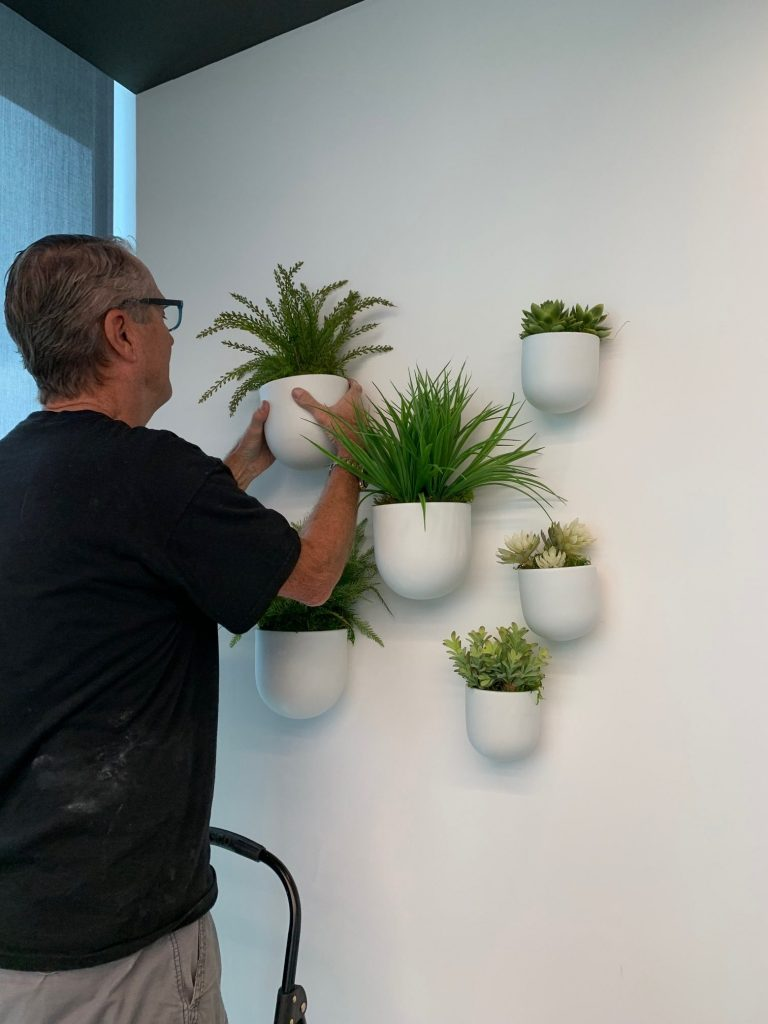 interior landscape installation of wall plants