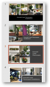 Interior plant picture package