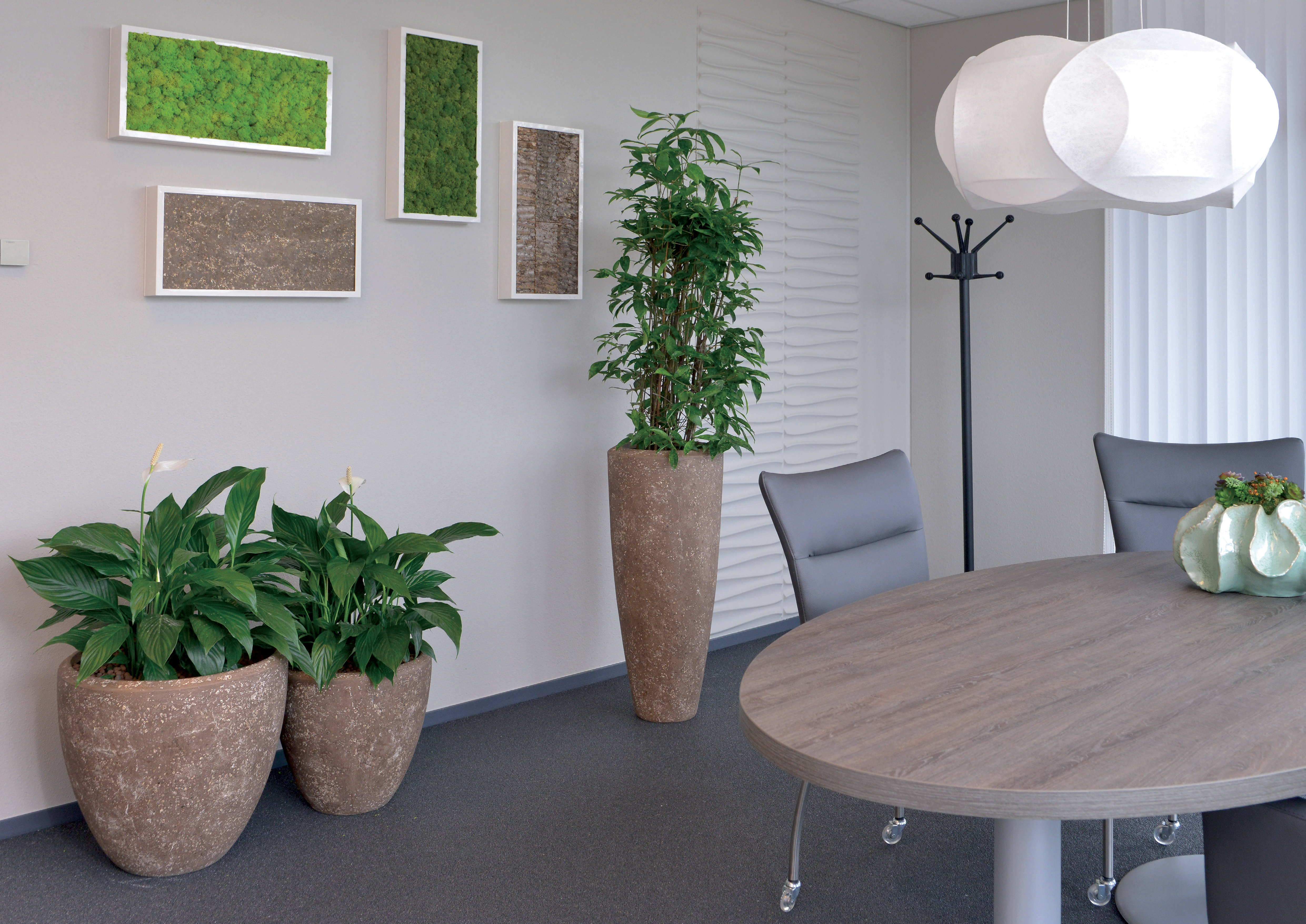 Merveilleux Photos And Video Interior Office Plants